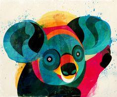 Koala v2  by Alvaro Tapia Hidalgo