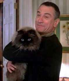 Robert De Niro with beloved Himalayan house cat, Mr Jinx. Crazy Cat Lady, Crazy Cats, I Love Cats, Cool Cats, Siamese Cats, Cats And Kittens, Men With Cats, Celebrities With Cats, Animal Gato