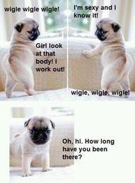 Pug Flirt