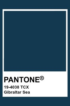 PANTONE 19-4038 TCX Gibraltar Sea #pantone #color #darkblue