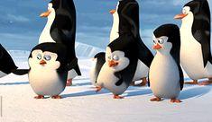 penguins of madagascar dreamworks animation gif