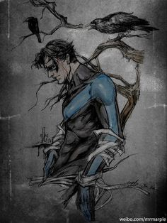 Nightwing by mrmaple