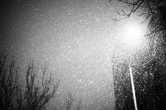 WINTER IN BROOKLYN - Chris Pino Photography