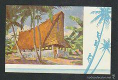 Postales: Islas Carolinas.Casa del cacique de la isla de Yap.Misión de Carolinas.ayudad a sus misioneros. - Foto 1 - 59528959