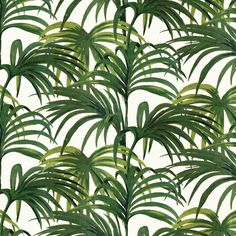 Palmeral Luxury Wallpaper - White / Green