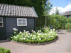 Landelijke tuin met zwembad Dordrecht » Hoveniersbedrijf Tim Kok Garden Structures, Outdoor Garden, Plants, Cottage Garden, Gorgeous Gardens, City Garden, Outdoor Gardens, Garden Inspiration, Farm Gardens