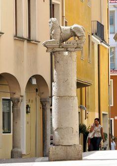Che bella questa strada quando si va in primavera, via San Andrea. Padua/Padova www.visitabanomontegrotto.com