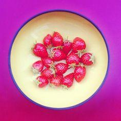 #récolte #fraises #terrasse #paris (juin 2014)