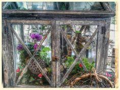 Rustic vintage glasshouse fairy garden terrarium
