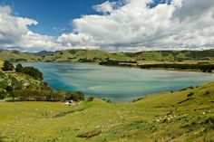 Papanui Inlet, Otago Peninsula, New Zealand Comedy Stories, Funny Stories, Short Stories, Character And Setting, Emotional Healing, Self Discovery, Nature Photos, Victorious, Thriller