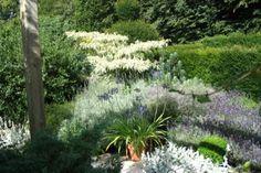 El jardín azul