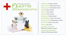 Assistive Technology, Neurology, Alternative Medicine, Exotic Pets, Dental, Fun, Unusual Pets, Dentistry, Teeth