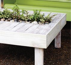 Great idea for old pallets. A living piece of furniture.