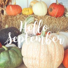 13 Likes, 0 Comments - Heather Welcome December, Hello September, Monthly Quotes, Mulling Spices, Watch Wallpaper, Holiday Images, New Month, Seasons Of The Year, Pretty Photos