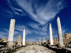 Salamis | Insolit Vi