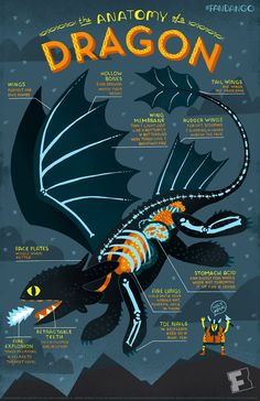 Toothless infographic for How to Train Your Dragon 2