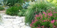took out the lawn and replaced it with a mix of native and well-adapted perennials, ornamental grasses, focal-point agaves, and small shrubs and trees. A limestone path invites visitors into the garden