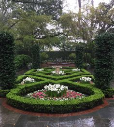 This was a stunning garden on the 2015 Azalea Garden Trail at a River Oaks home in Houston, Texas. It is a fabulous example of formal garden design.