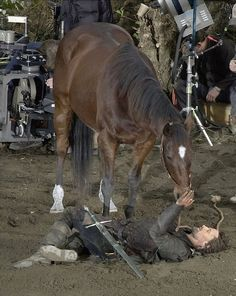 """Viggo """"Aragorn"""" Mortensen after the shot of The Lord of the Rings Trilogy bought the faithful horse he rode in the films."""