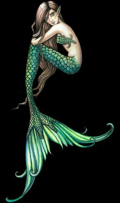 Mermaid (molly harrison)