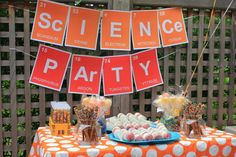 """Photo 1 of 15: Science, Mad Scientist / Birthday """"Remi""""s 5th Birthday"""" 