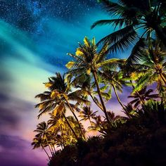 🌴💫 #hawaiiannights #marcomitrephotography Ⓜ️🤙🏽 • • • #shorebreak #nightphotography #stars #nikonphotography #nikon #photography #neverstopexploring #nature #natureaddict #travelstoke #instalike #instagood #ocean #oceanphotography #followme #igdaily #getoutandexplore #mothernature #teamnikon #ig_shotz #ig_oahu #awesome #epic #hawaii #notshorebreak