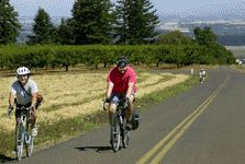 Oregon Events and Entertainment Near Portland and Salem - Winery bike tour