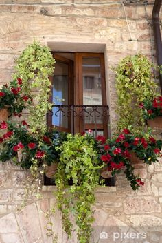 Everybody wants to visit the Toscana, Italy. The Tuscany boasts a proud heritage. Old Doors, Windows And Doors, Luxury Mediterranean Homes, Tuscan Homes, Mediterranean Decor, Mediterranean Architecture, Balcony Flowers, Under The Tuscan Sun, Backyard