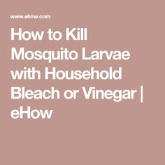 How to Kill Mosquito Larvae with Household Bleach or Vinegar | eHow