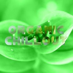 "Check out my new single ""Organic Chillout"" distributed by DistroKid and live on…"