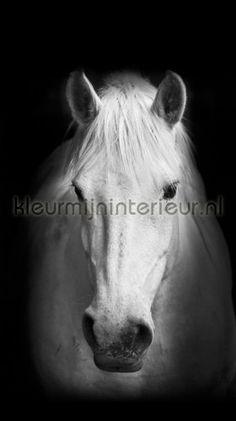 Wit paard gordijnen uit de collectie Photoprints van Kleurmijninterieur is verkrijgbaar bij kleurmijninterieur