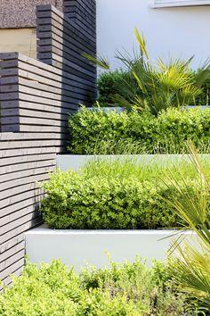 House Frontage Design - CONCEPT Landscape Architects London