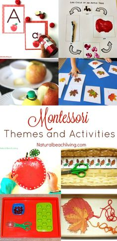12 More Months of Montessori Monthly Themes - Natural Beach Living