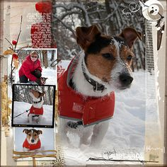 A Project by HeatherPrinspea from our Scrapbooking Gallery originally submitted… Dog Scrapbook Layouts, Scrapbook Paper Crafts, Scrapbook Supplies, Scrapbook Cards, Snow Fun, Christmas Scrapbook, Making Ideas, Card Making, Diy