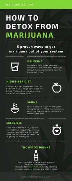 5 Ways To Detox From Marijuana Infographic