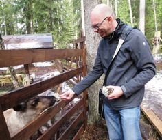 At the Nuuksio National Park I met these cute reindeers. Nuuksio is located close to Helsinki but it's so close to wilderness, almost the real virgin forest. Cities In Finland, Finland Travel, Urban City, Helsinki, The World's Greatest, Wildlife Photography, Iceland, Norway, Sweden