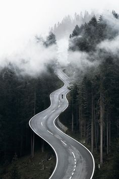 Dream Road Road Road Trip Road Photo Landscape photography Drive travel wanderlust on the road empty road Schomp BMW Road Photography, Landscape Photography, Photography Ideas, Natur Wallpaper, Forest Wallpaper, Empty Road, Road Trip, Beautiful Roads, Winding Road