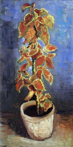 Coleus Plant in a Flowerpot~Vincent van Gogh
