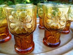 Vintage Libbey Amber Country Garden Juice Glasses set of 6