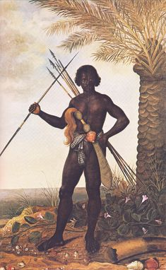 late Afro-Brazilian Warrior by Albert Eckhout. This painting is from the period of Ganga Zumba, a Kongo aristocrat captured in battle & transported to slavery in Brazil. Escaping, he becomes the leader of a settlement of of freedom fighters at Palmares. African Tribes, African Diaspora, African Art, African Theme, African Design, Albert Eckhout, Black History, Art History, History Facts