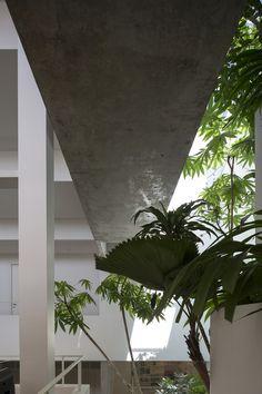 Gallery Of Terrace House / Formwerkz Architects   9