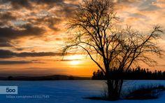 Sunset px by RIserPhotography  Annaberg-buchholz Erzgebirgskreis Warm Winter annaberg baum cold deutschland erz erzgebirge erzgebir