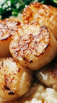 muscheln dinner entree Brown Butter Scallops with Parmesan Risotto - Pinch of Yum Think Food, I Love Food, Good Food, Yummy Food, Risotto Receita, Seafood Recipes, Cooking Recipes, Clam Recipes, Bread Recipes