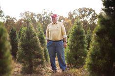 O, Christmas Tree Farm | Arkansas Life