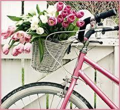 woman bike with basket - Pesquisa do Google