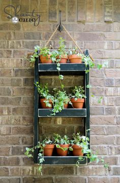 Need DIY garden projects and ideas to decorate your home outdoor? Find 101 DIY garden projects made with recycled materiel to upgrade your garden at no cost. Diy Wood Planters, Diy Hanging Planter, Wood Planter Box, Garden Planters, Succulent Planters, Planter Ideas, Hanging Herbs, Balcony Garden, Succulent Wall