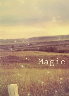 All That is Magical.....