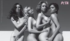 Miss USA winners Susie Castillo, Shandi Finnessey, Shanna Moakler and Alyssa Campanella would rather strip down naked than wear fur! Check out behind-the-scenes footage from the beauty queens' new PETA ad. Miss Usa, Shanna Moakler, Alyssa Campanella, Agyness Deyn, Bravo Tv, Bleach Blonde, Peta, Doc Martens, Beauty Queens