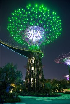 Gardens by the Bay, Singapore - sculptures of Lit Trees