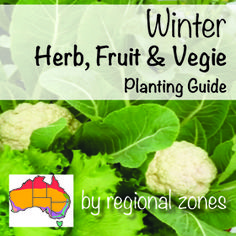 Winter Herbs Fruit Vegies Planting Guide | Australian Temperate Zones | Seeds | Seedlings | About The Garden Magazine
